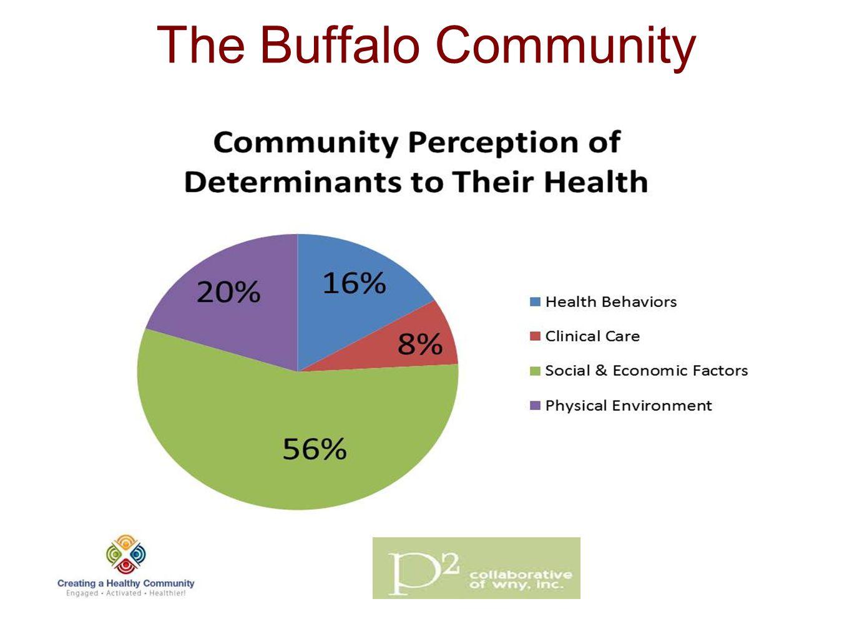 The Buffalo Community