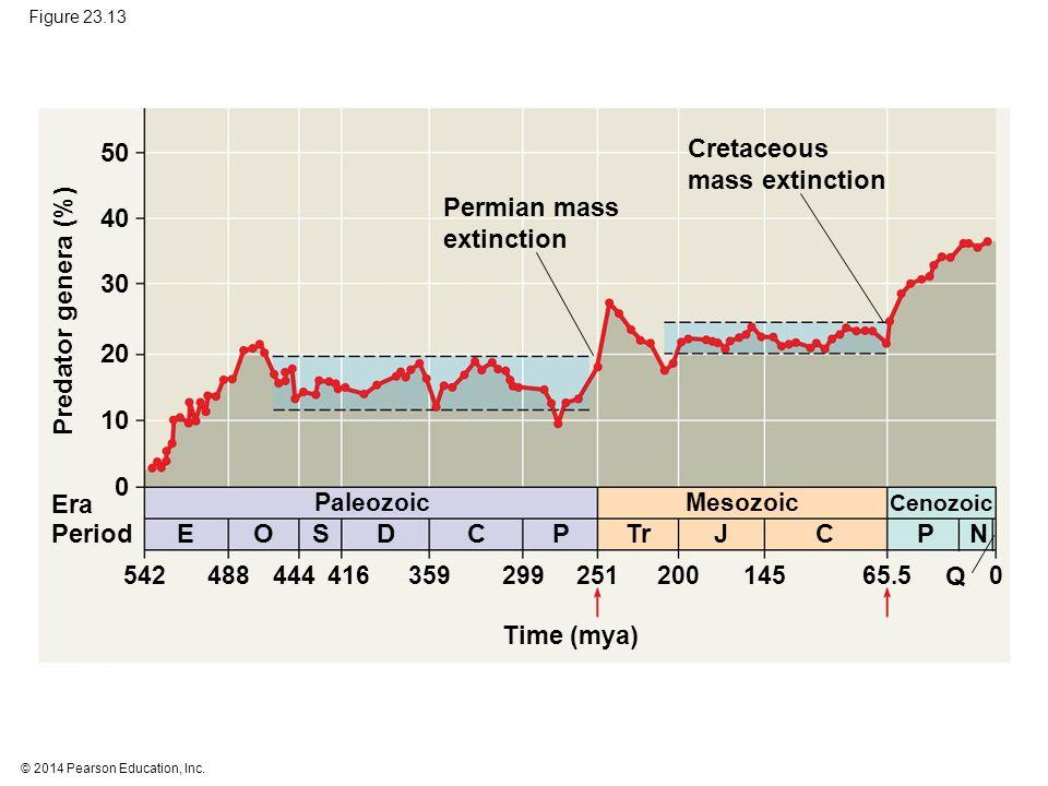 © 2014 Pearson Education, Inc. Figure 23.13 Time (mya) Paleozoic Mesozoic Cenozoic 54248844441635929925120014565.50 EOSDCPTrJPCN Q Era Period 0 10 20