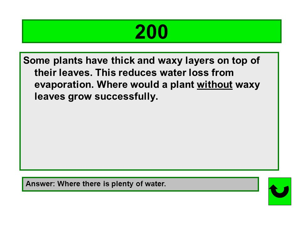 100 Name 3 things plants need in order to live. Answer: light, water, carbon dioxide