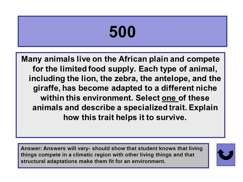 400 Answer: Thick body covering (NOT fur- penguins are birds and are covered in feathers.) Many animals such as walruses, seals, polar bears, and penguins live in polar regions.