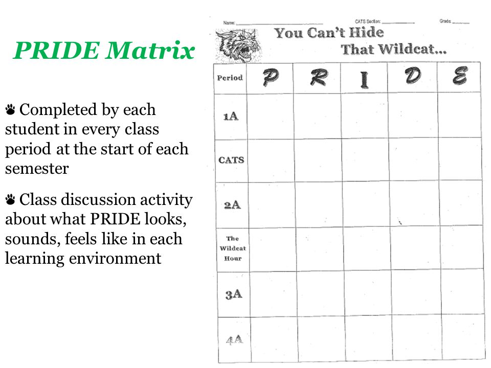 Completed by each student in every class period at the start of each semester Class discussion activity about what PRIDE looks, sounds, feels like in each learning environment PRIDE Matrix