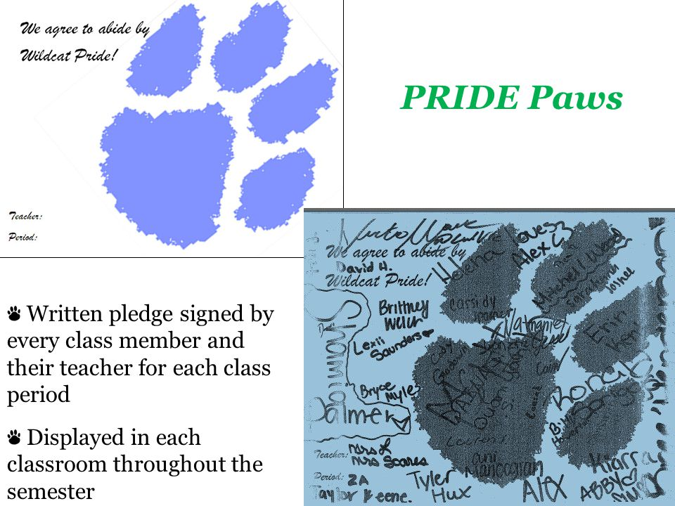 Written pledge signed by every class member and their teacher for each class period Displayed in each classroom throughout the semester PRIDE Paws
