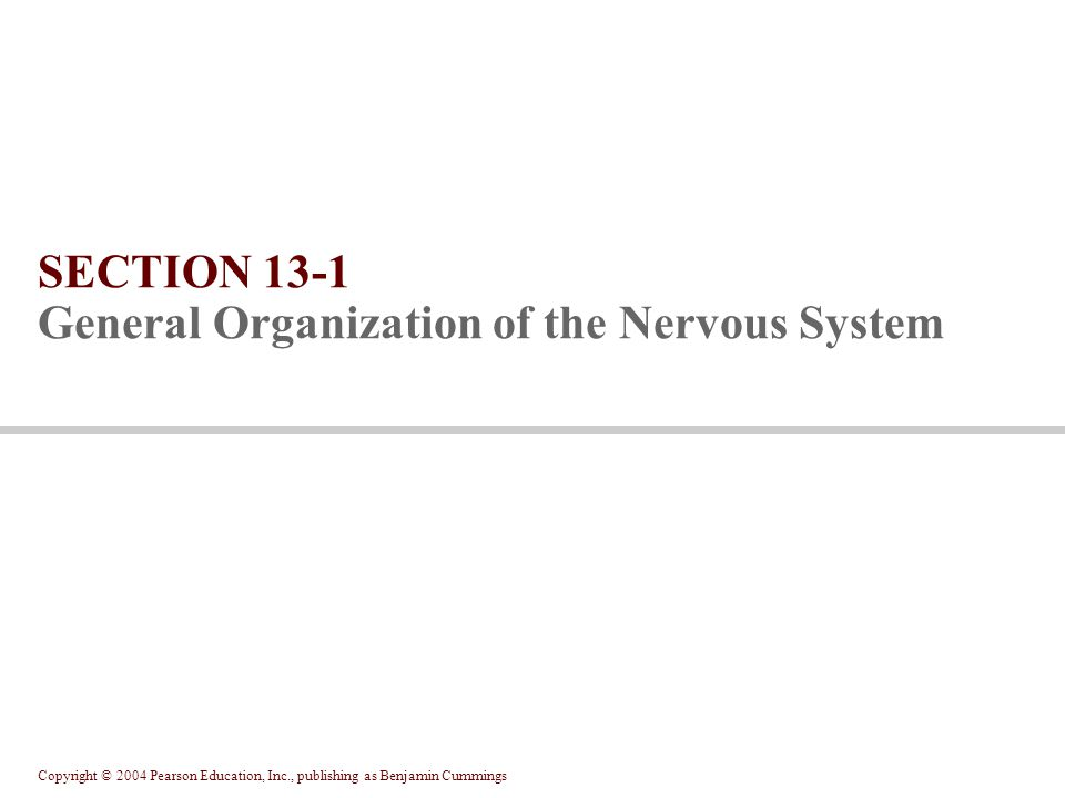 Copyright © 2004 Pearson Education, Inc., publishing as Benjamin Cummings CNS Brain and spinal cord In the white matter, axons arranged in tracts and columns PNS Remainder of nervous tissue Divisions of the Nervous System