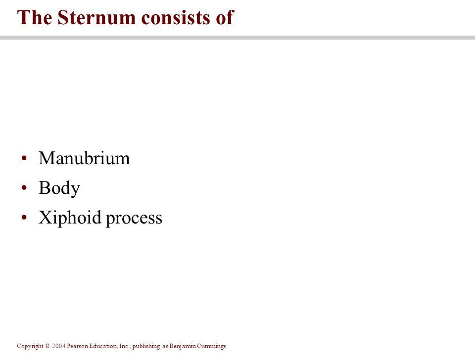 Manubrium Body Xiphoid process The Sternum consists of