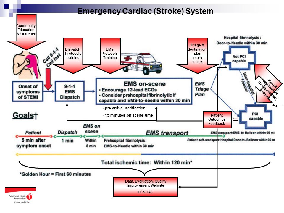 Emergency Cardiac (Stroke) System Dispatch Protocols training EMS Protocols Training pre arrival notification 15 minutes on-scene time Triage & destin