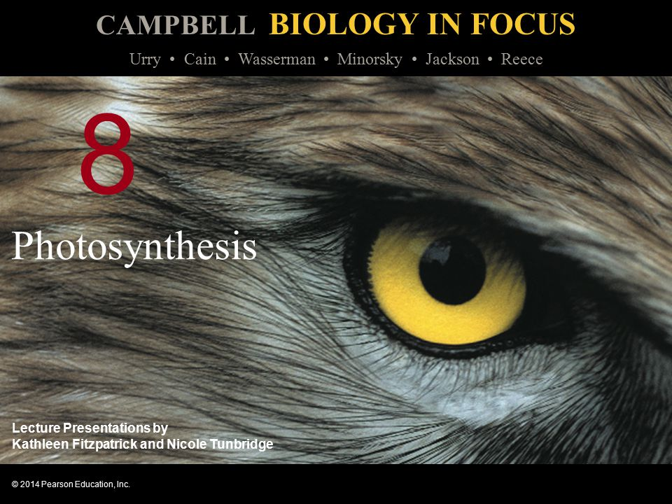 CAMPBELL BIOLOGY IN FOCUS © 2014 Pearson Education, Inc. Urry Cain Wasserman Minorsky Jackson Reece Lecture Presentations by Kathleen Fitzpatrick and