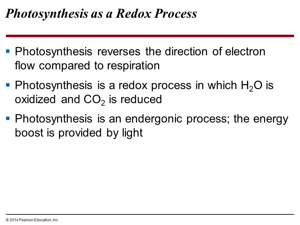 Photosynthesis as a Redox Process  Photosynthesis reverses the direction of electron flow compared to respiration  Photosynthesis is a redox process