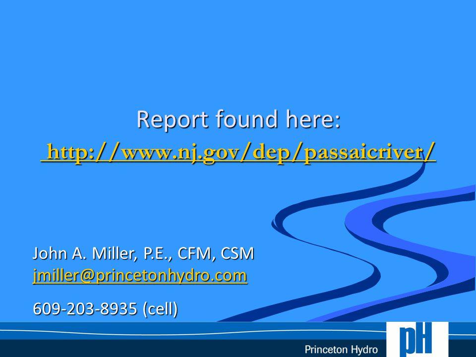 Report found here: http://www.nj.gov/dep/passaicriver/ http://www.nj.gov/dep/passaicriver/ http://www.nj.gov/dep/passaicriver/ John A. Miller, P.E., C