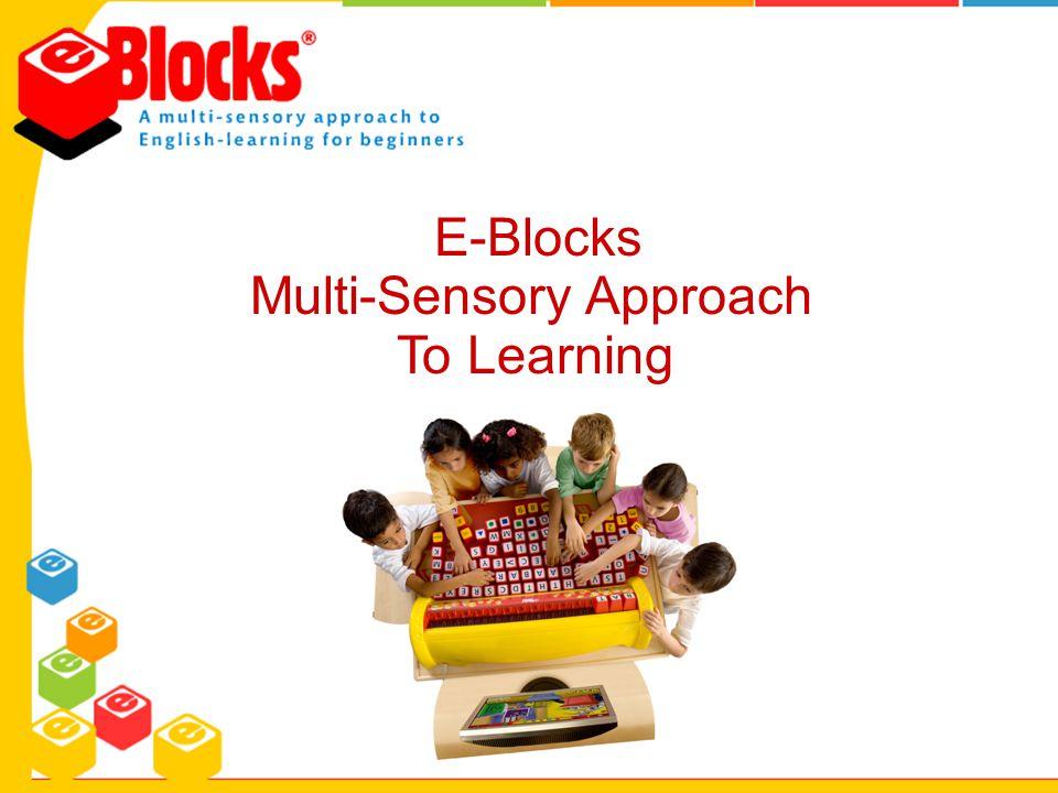 E-Blocks Multi-Sensory Approach To Learning