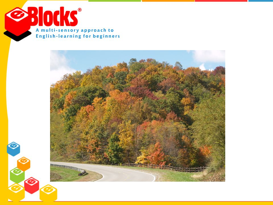 E-Blocks Results E-Blocks Reading Program Educational Support Systems, Inc.
