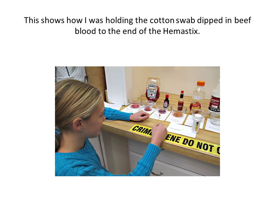 This shows how I was holding the cotton swab dipped in beef blood to the end of the Hemastix.