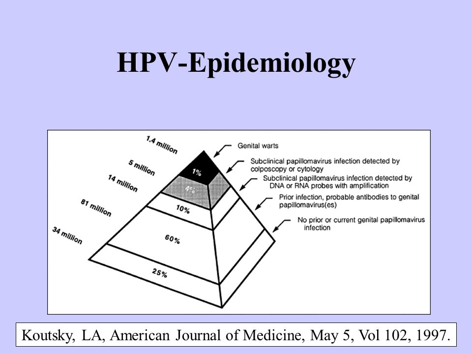 HPV-Epidemiology Koutsky, LA, American Journal of Medicine, May 5, Vol 102, 1997.