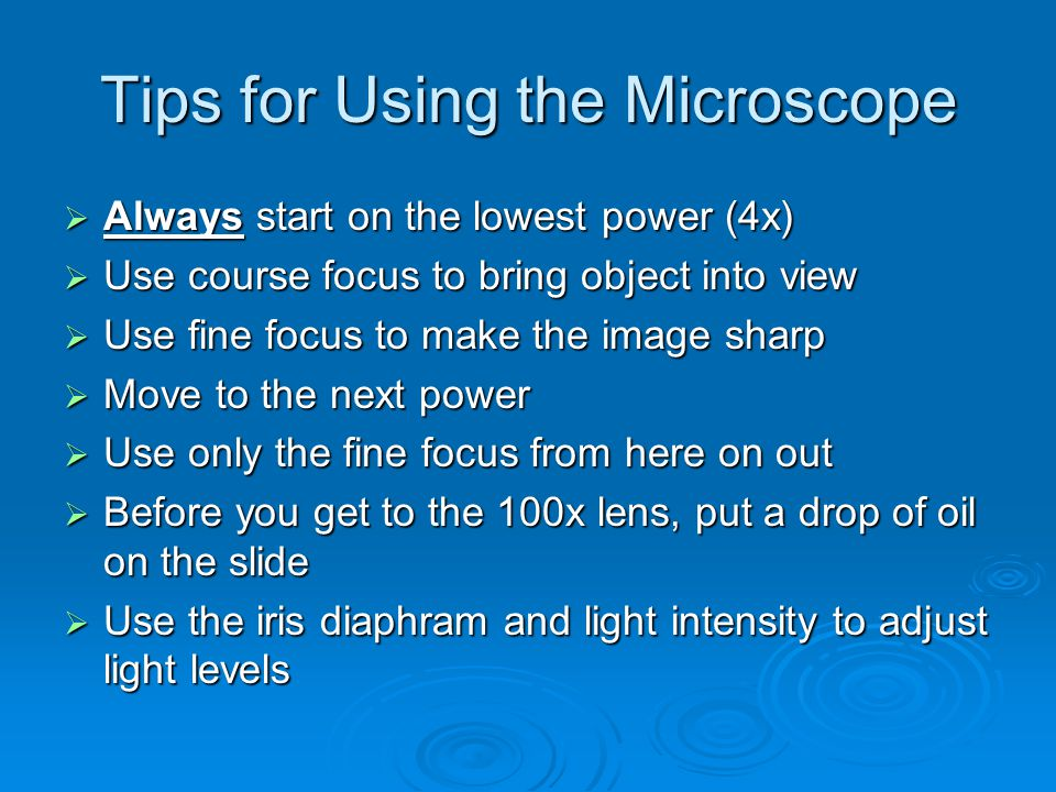 Tips for Using the Microscope  Always start on the lowest power (4x)  Use course focus to bring object into view  Use fine focus to make the image sharp  Move to the next power  Use only the fine focus from here on out  Before you get to the 100x lens, put a drop of oil on the slide  Use the iris diaphram and light intensity to adjust light levels