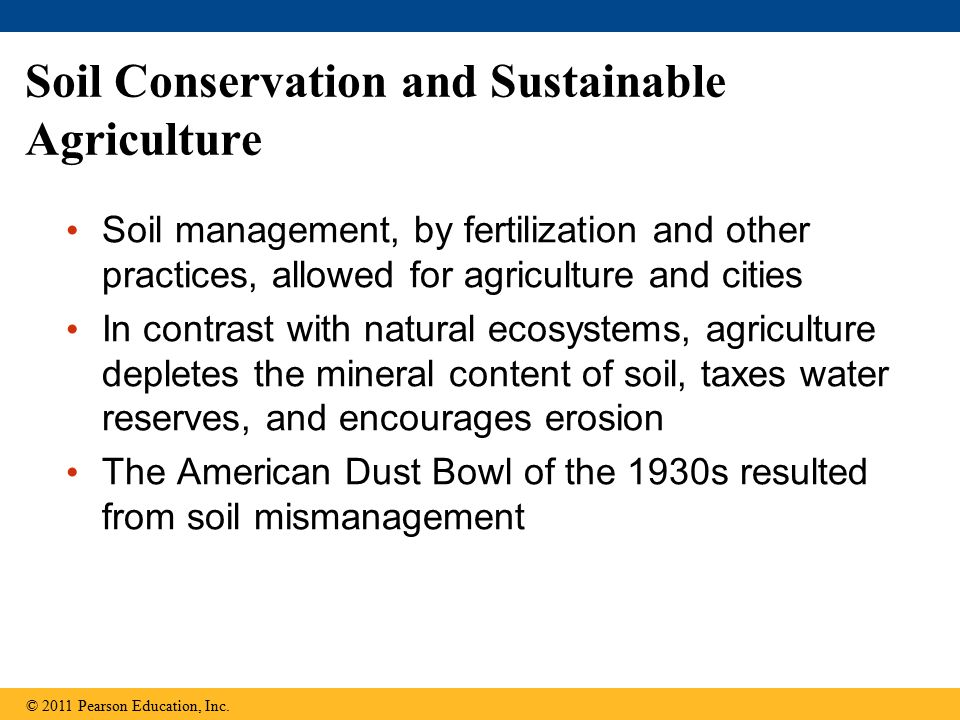 Soil Conservation and Sustainable Agriculture Soil management, by fertilization and other practices, allowed for agriculture and cities In contrast with natural ecosystems, agriculture depletes the mineral content of soil, taxes water reserves, and encourages erosion The American Dust Bowl of the 1930s resulted from soil mismanagement © 2011 Pearson Education, Inc.