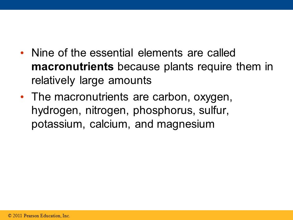 Nine of the essential elements are called macronutrients because plants require them in relatively large amounts The macronutrients are carbon, oxygen