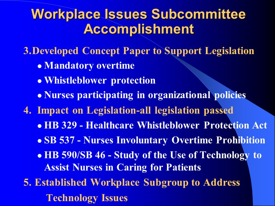 Workplace Issues Subcommittee Accomplishments 1.Survey validated nurses' issues & concerns 2. Paper written that identified: Scope of the problems Imp