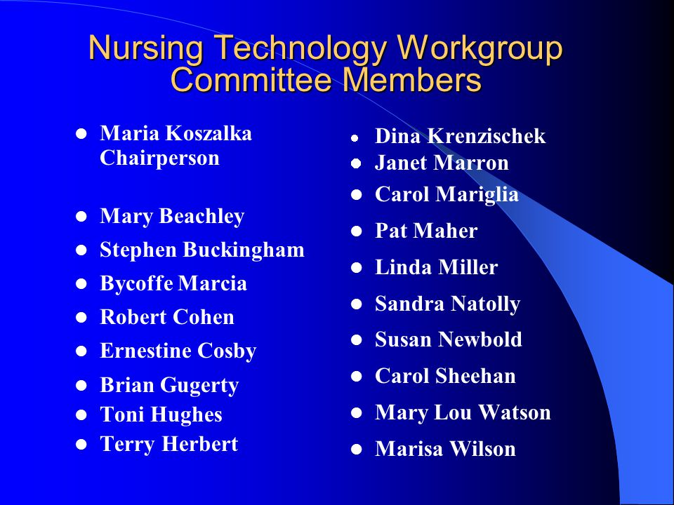 Workplace Issues Subcommittee Nursing Technology Workgroup Chairperson: Maria Koszalka