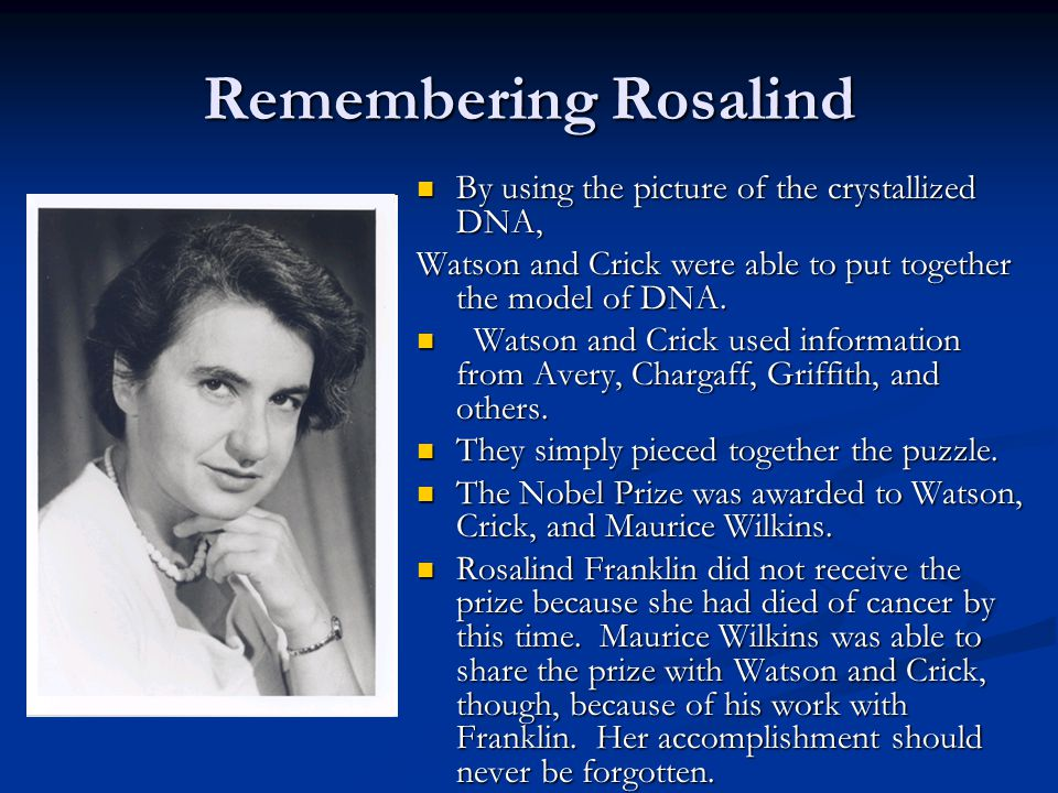 Remembering Rosalind By using the picture of the crystallized DNA, Watson and Crick were able to put together the model of DNA.