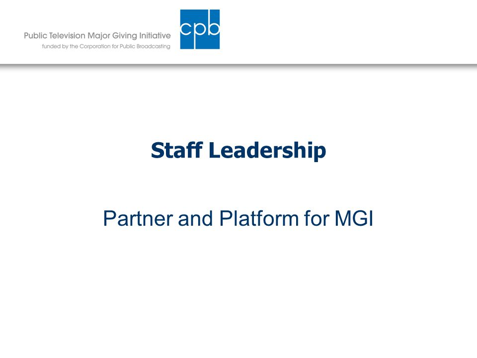 Staff Leadership Partner and Platform for MGI