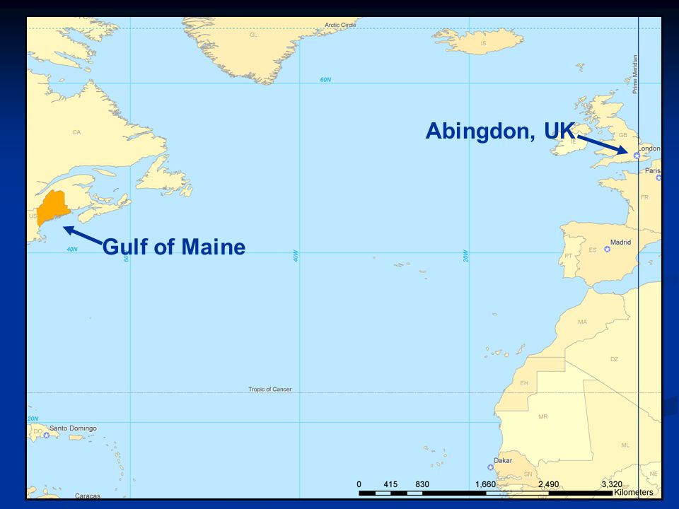 MAINE Gulf of Maine Maine American Lobster Year-round fishery Year-round fishery 2007 landings 2007 landings 28,700 MT 28,700 MT 77% ME ex-vessel value 77% ME ex-vessel value >6,000 licenses >6,000 licenses >10,000 jobs >10,000 jobs $500 million USD $500 million USD