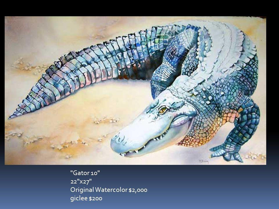 Gator 10 22 x27 Original Watercolor $2,000 giclee $200