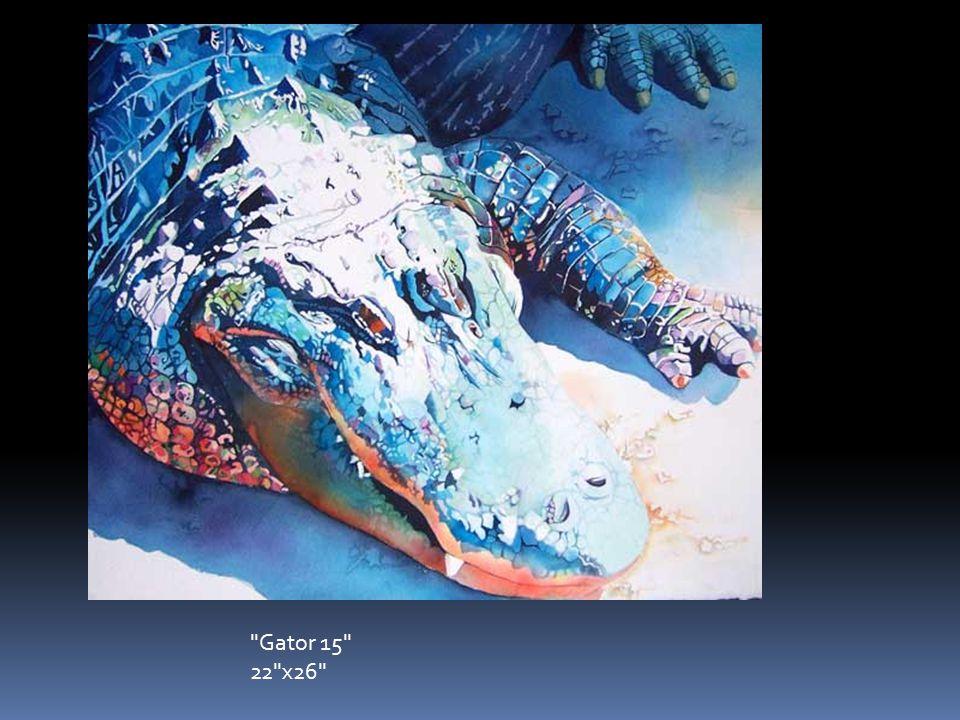 Gator 15 22 x26