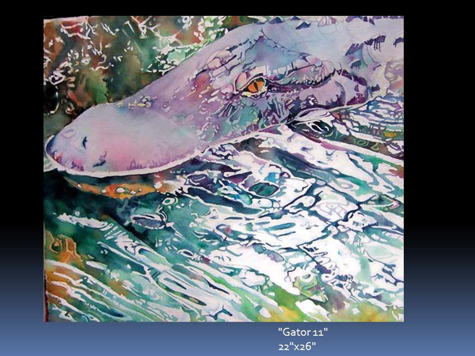 Gator 11 22 x26
