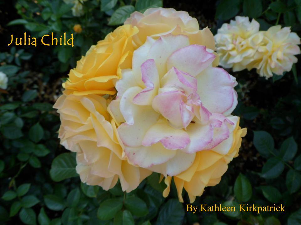 Julia Child By Kathleen Kirkpatrick