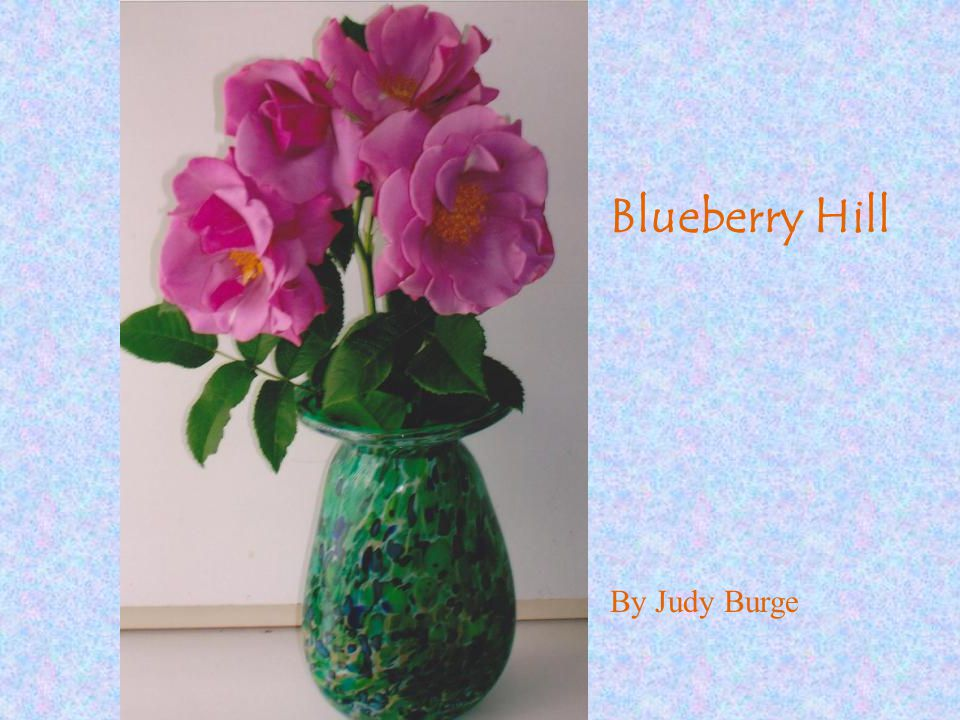 Blueberry Hill By Judy Burge