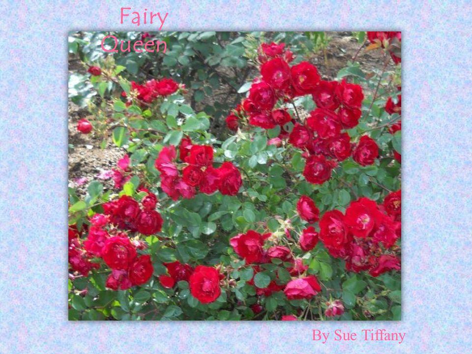 Fairy Queen By Sue Tiffany