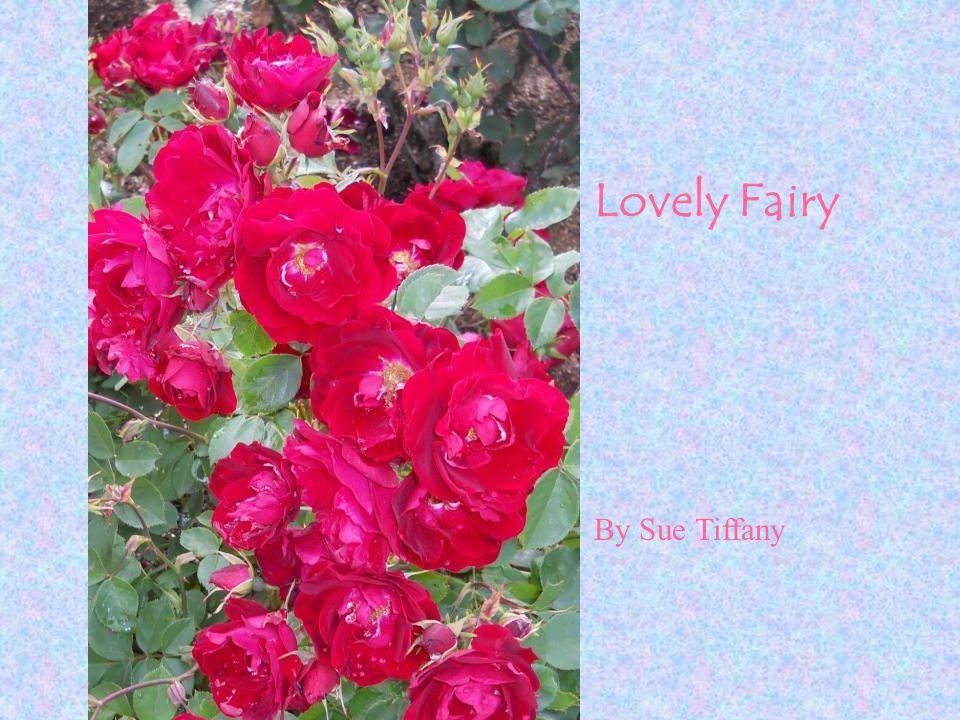 Lovely Fairy By Sue Tiffany