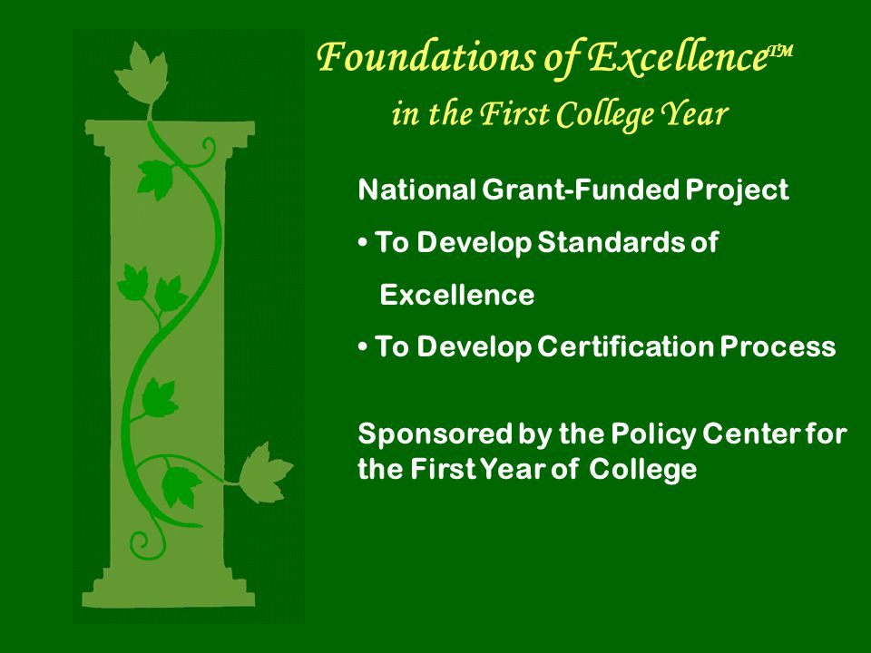 Foundations of Excellence TM in the First College Year National Grant-Funded Project To Develop Standards of Excellence To Develop Certification Process Sponsored by the Policy Center for the First Year of College