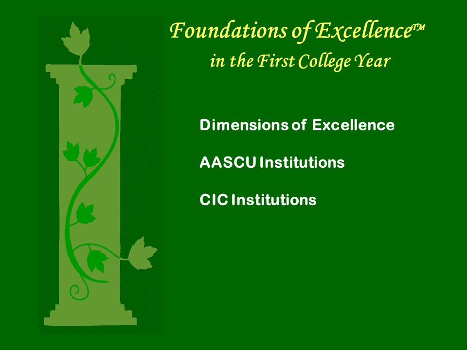Foundations of Excellence TM in the First College Year Dimensions of Excellence AASCU Institutions CIC Institutions