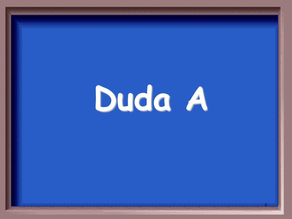 4 Duda A