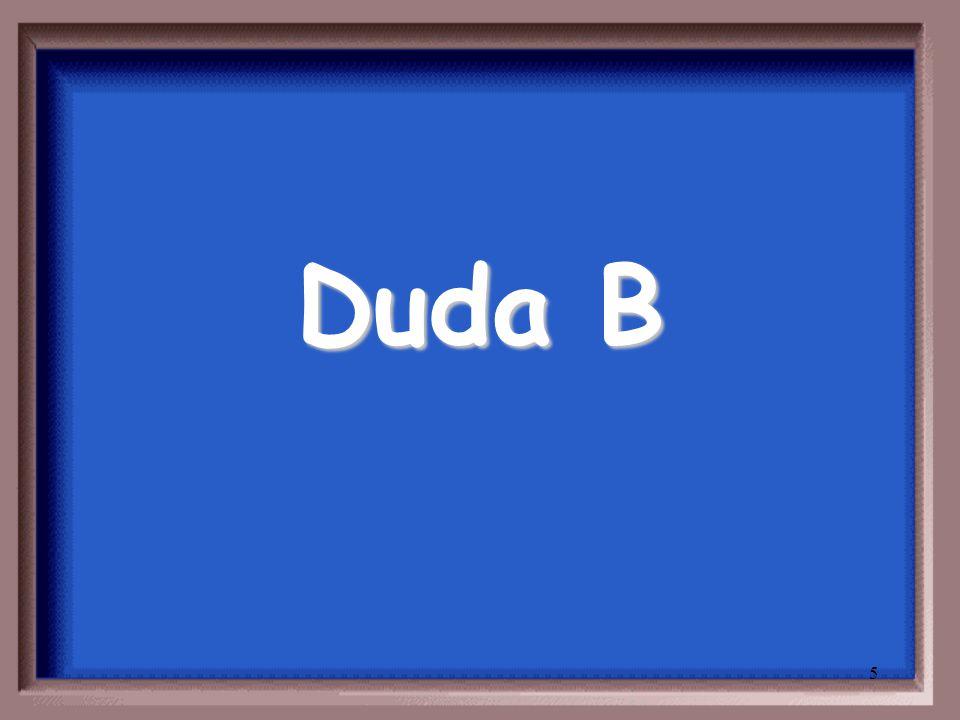5 Duda B