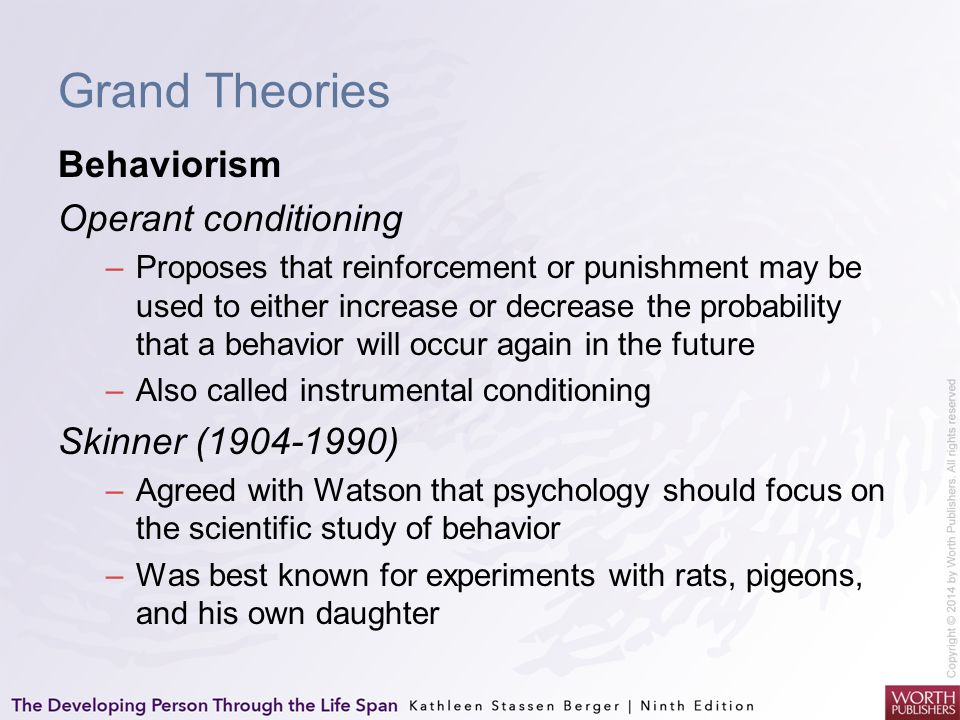 Grand Theories Behaviorism Operant conditioning –Proposes that reinforcement or punishment may be used to either increase or decrease the probability