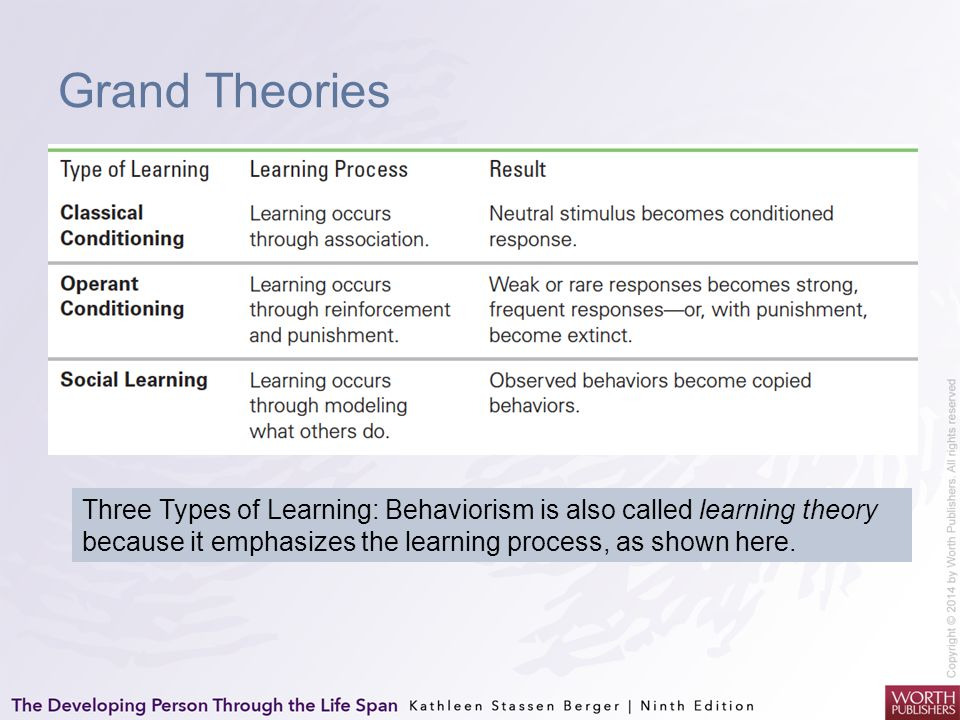 Grand Theories Three Types of Learning: Behaviorism is also called learning theory because it emphasizes the learning process, as shown here.
