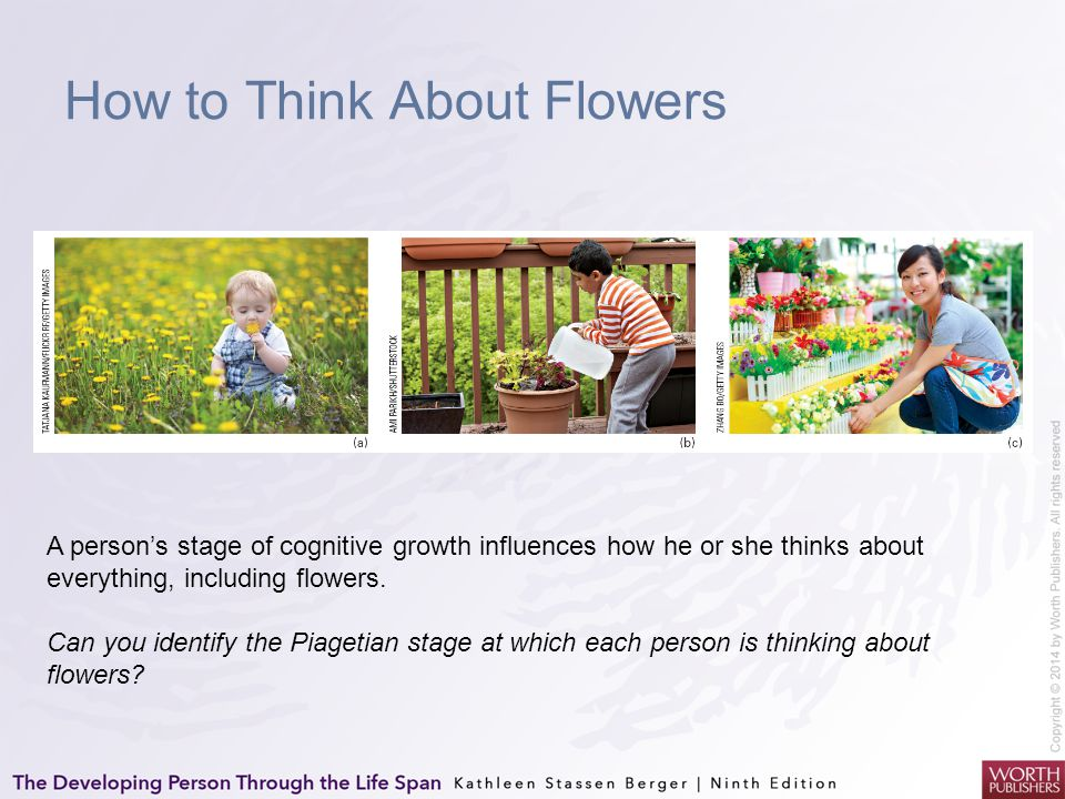 How to Think About Flowers A person's stage of cognitive growth influences how he or she thinks about everything, including flowers. Can you identify