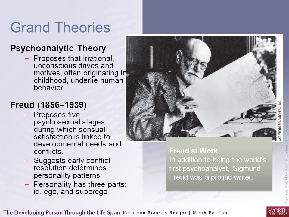 Grand Theories Psychoanalytic Theory –Proposes that irrational, unconscious drives and motives, often originating in childhood, underlie human behavio