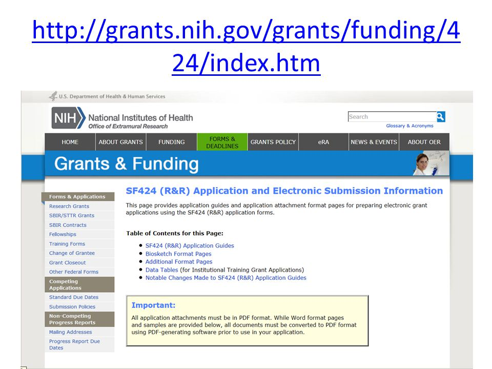 http://grants.nih.gov/grants/funding/4 24/index.htm