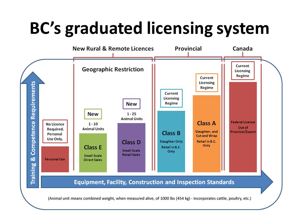 BC's graduated licensing system