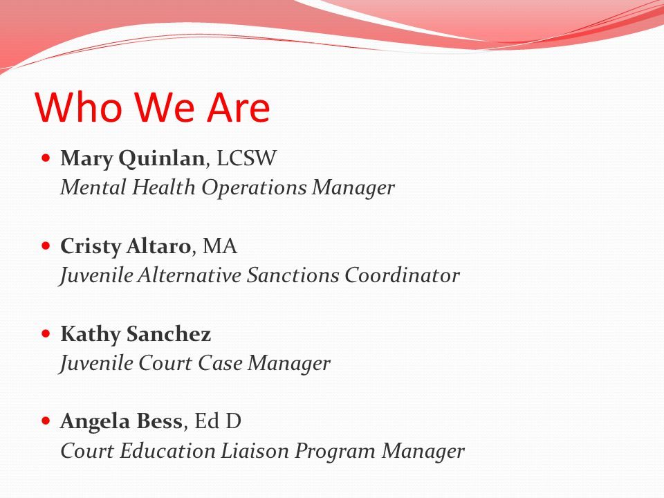 Who We Are Mary Quinlan, LCSW Mental Health Operations Manager Cristy Altaro, MA Juvenile Alternative Sanctions Coordinator Kathy Sanchez Juvenile Court Case Manager Angela Bess, Ed D Court Education Liaison Program Manager
