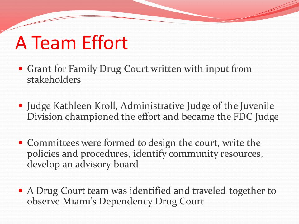 A Team Effort Grant for Family Drug Court written with input from stakeholders Judge Kathleen Kroll, Administrative Judge of the Juvenile Division championed the effort and became the FDC Judge Committees were formed to design the court, write the policies and procedures, identify community resources, develop an advisory board A Drug Court team was identified and traveled together to observe Miami's Dependency Drug Court