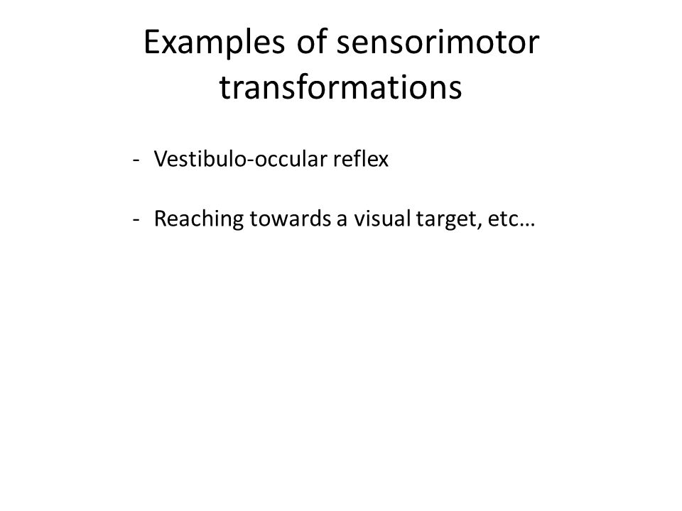 Characterizing the sensorimotor transformation 1 st order 2 nd order