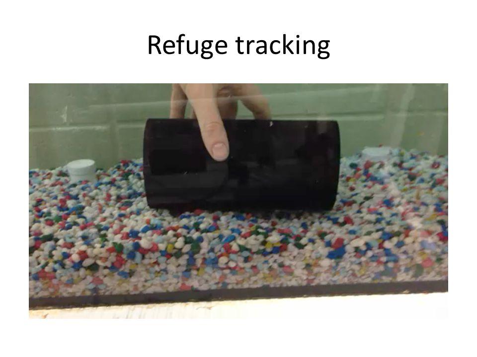 Refuge tracking