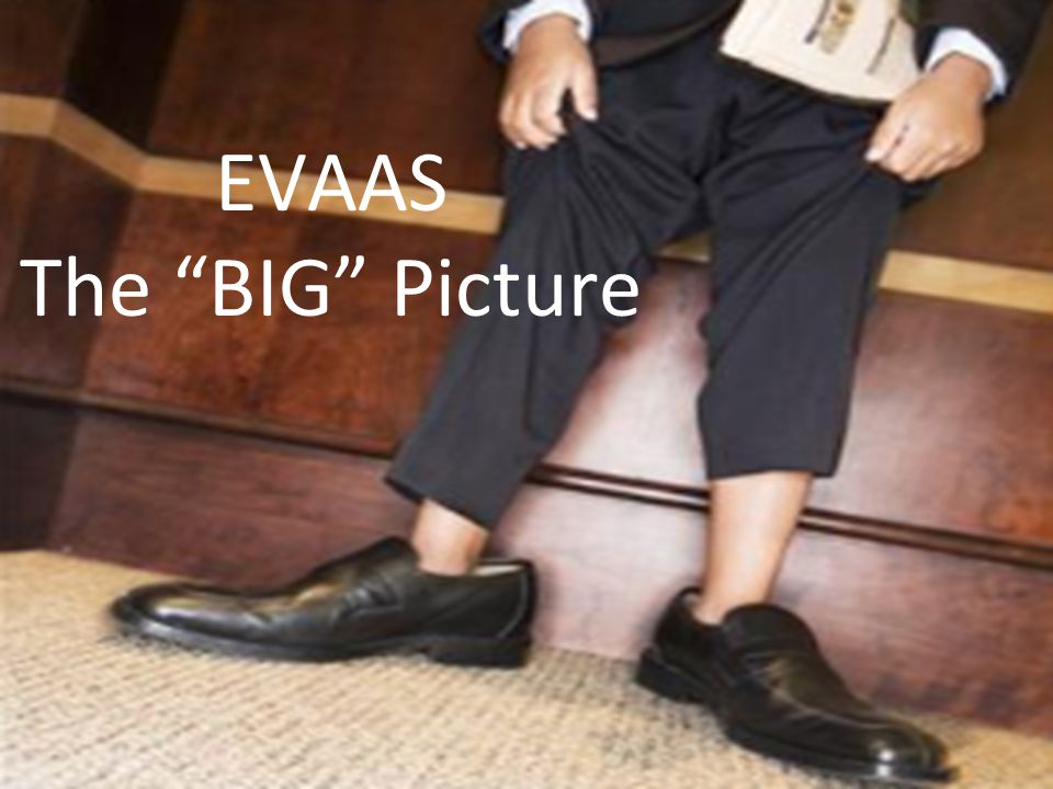 EVAAS The BIG Picture