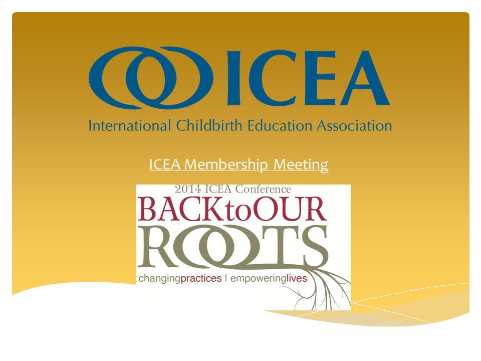 ICEA Membership Meeting