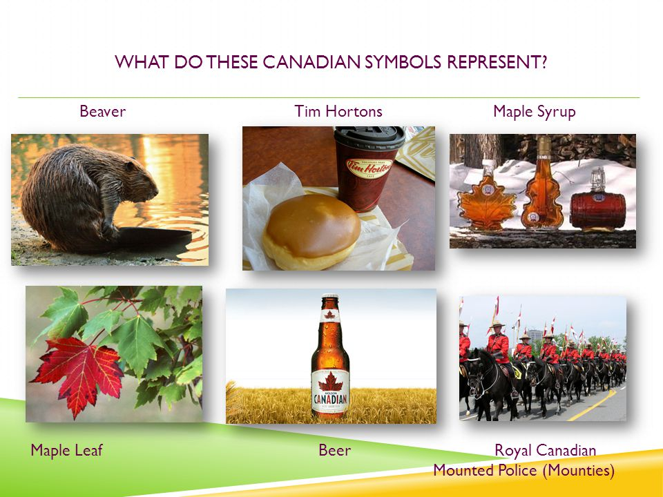 WHAT DO THESE CANADIAN SYMBOLS REPRESENT? BeaverTim HortonsMaple Syrup Maple Leaf Beer Royal Canadian Mounted Police (Mounties)