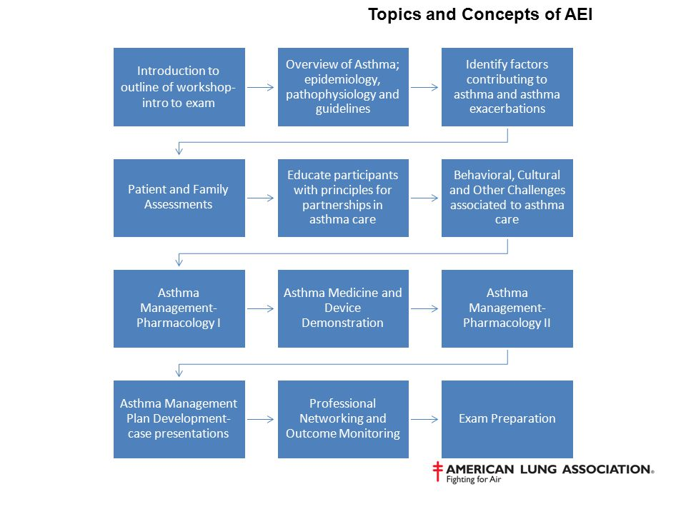 Topics and Concepts of AEI Introduction to outline of workshop- intro to exam Overview of Asthma; epidemiology, pathophysiology and guidelines Identif