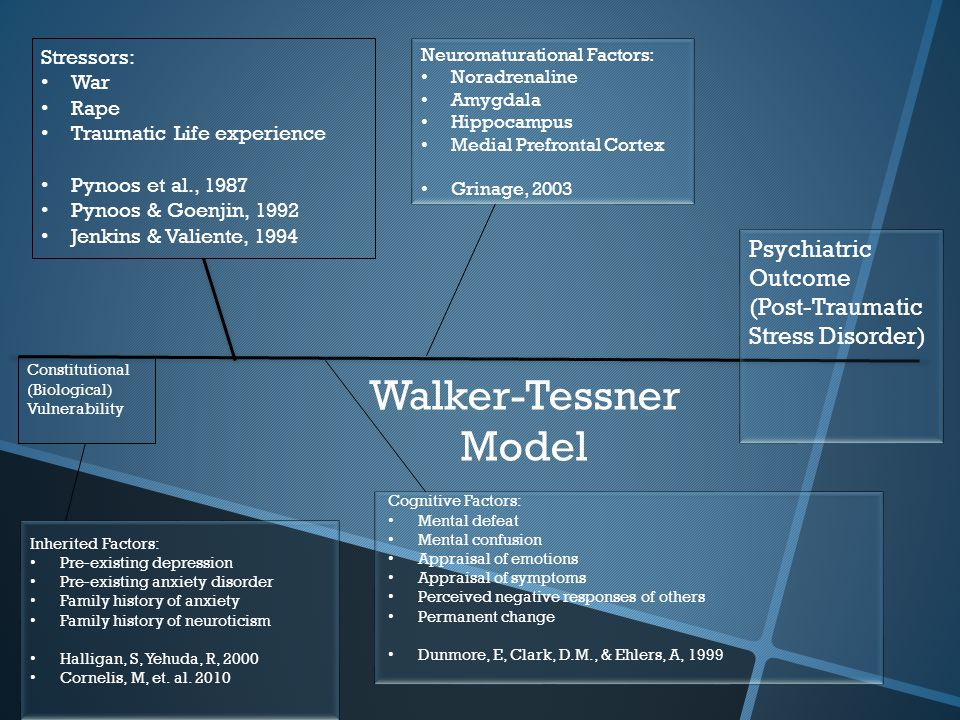 Walker-Tessner Model Stressors: War Rape Traumatic Life experience Pynoos et al., 1987 Pynoos & Goenjin, 1992 Jenkins & Valiente, 1994 Inherited Factors: Pre-existing depression Pre-existing anxiety disorder Family history of anxiety Family history of neuroticism Halligan, S, Yehuda, R, 2000 Cornelis, M, et.
